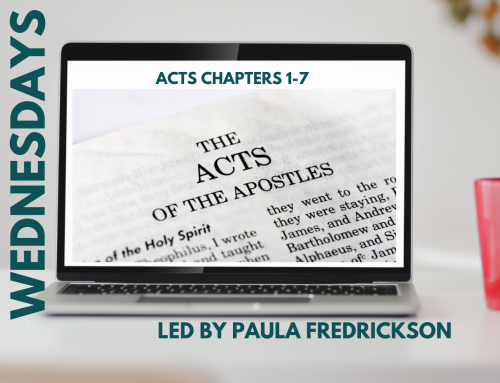Wednesdays- Acts Chapters 1-7 Bible Study