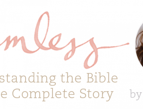 Seamless Summer Women's Bible Study